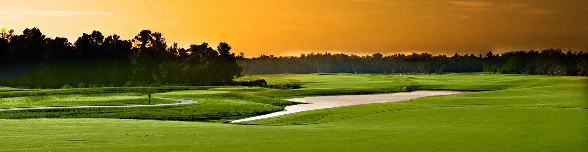 Disney Orlando Golf Course Communities Homes for Sale & Real Estate